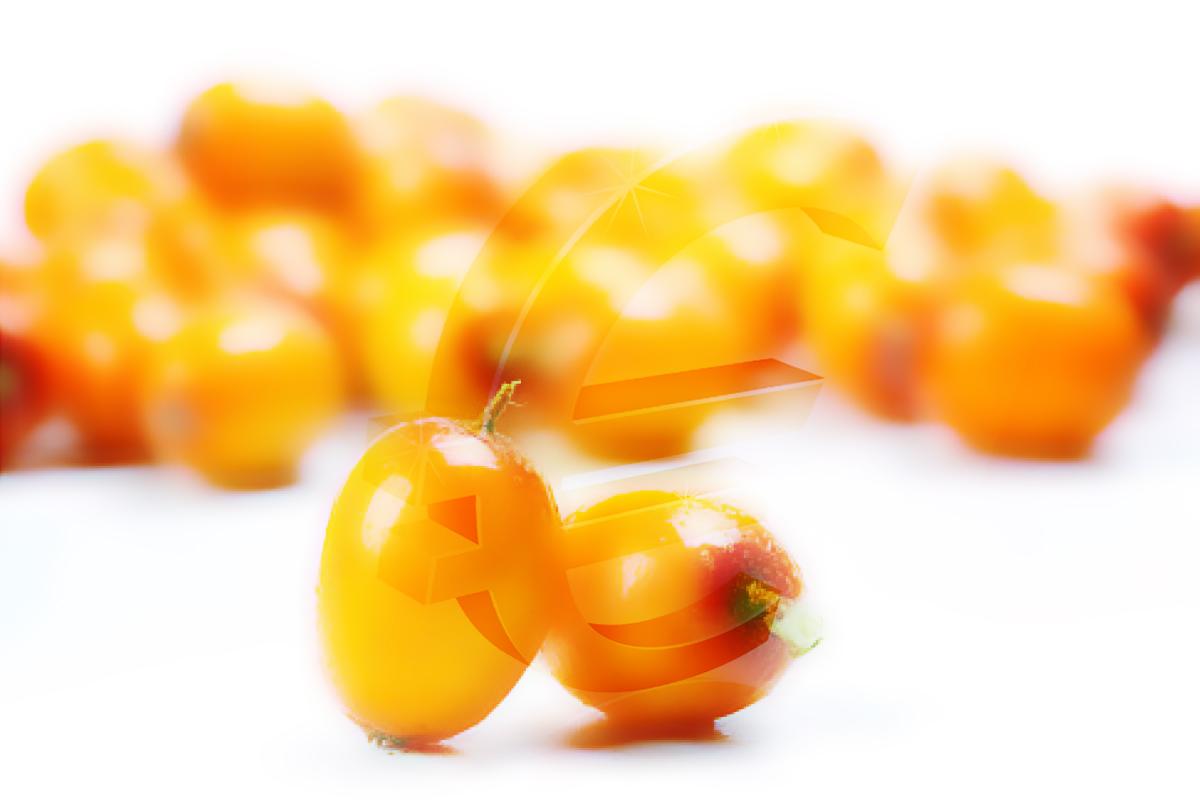 Σπόροι «φλέβα χρυσού»