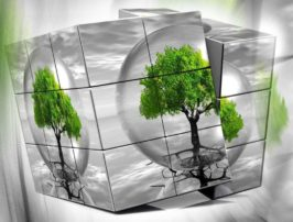 Η «πράσινη» τραπεζική στροφή